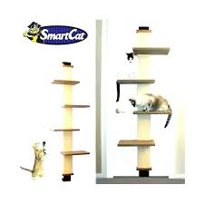 over the door cat tree hanging furniture outdoor ideas from picture d hanging cat condo tree