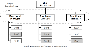4 types of project organizational structure