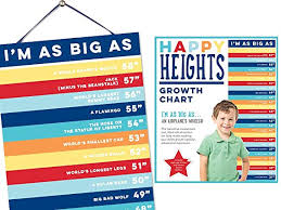 Interactive Growth Chart Boys Educational Height Comparison Growth Chart Removable Girls Boys With Age Stickers Boy