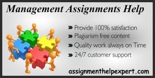 six sigma design assignment help  business assignment help