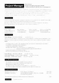 Healthcare Manager Resume Gorgeous It Project Manager Resume Objective Awesome Healthcare Project