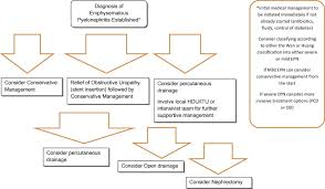 Pathophysiology Of Pyelonephritis In Flow Chart Emphysematous Pyelonephritis Time For A Management Plan