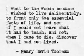 Thoreau Walden Quotes Magnificent Walden By Henry David Thoreau I Love This Quote So Did My