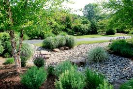 Small Picture Commercial Rain Garden Design Best Rain Garden Design Idea