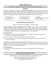 Law Enforcement Resume Template Police Officer Example Cv Entry