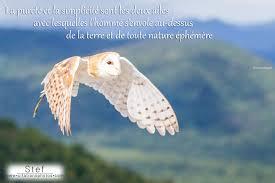 Citations Proverbes Sur âme Sœur Citation Nature Beauté