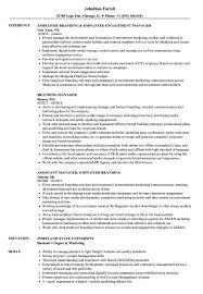 Branding Manager Resume Samples Velvet Jobs