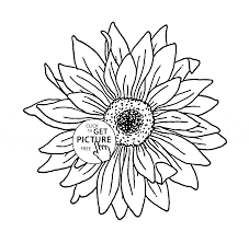 Small Picture Sunflower coloring page for kids flower coloring pages printables