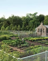 martha stewart vegetable garden design