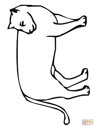 cougar coloring pages free and mountain lion