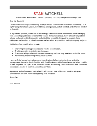 Leading Professional Team Lead Cover Letter Examples Resources