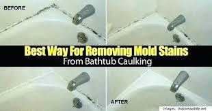 remove mold from shower remove mold from shower how to get rid of mold in shower remove mold from shower