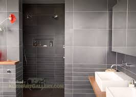 Contemporary Shower Modern Showers