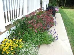 small flower garden designs flower garden designs for front of house small flower garden ideas