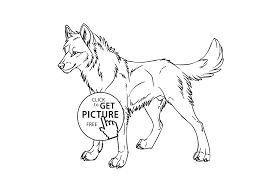 Wolf Wild Animals Coloring Pages For Kids Printable Wolf Color