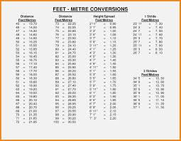 34 Extraordinary Cms To Feet Conversion Chart