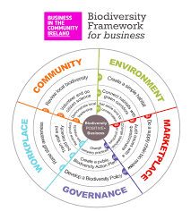 Our New Biodiversity Framework F Business Diagrams