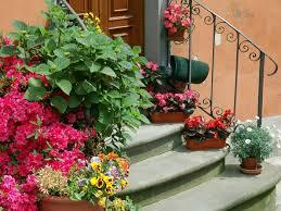 Treppen deko ideen & bilder. Garten Deko Ideen Die Garten Oder Haustreppe Mit Blumen Dekorieren