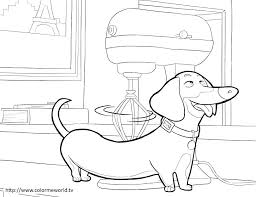 Dachshund Coloring Pages Buddy Printable Coloring Page The Secret