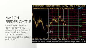 March Feeder Cattle Prices Chart Analysis Gann Techniques