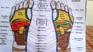 Reflexology How To Read A Foot Reflexology Chart