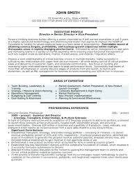 Best Executive Resume Format Beauteous Executive Resume Format Template Executive Resume Format Template