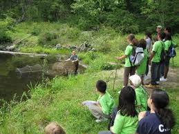 go green summer camp wallerstein collaborative nyu steinhardt in addition to engaging activities in the sciences and arts participants also explore their natural urban environment through field trips in and around the