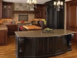 kitchen black kitchen cabinets modular kitchen cabinets