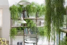 informal green wall indoors. Furniture Informal Green Wall Indoors Of
