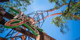 busch gardens tampa s newest coaster is now open