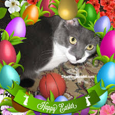 easter wishes facebook has some great frames