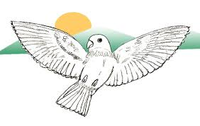 flying bird drawing.  Drawing Bird Drawing Step By To Flying Drawing N