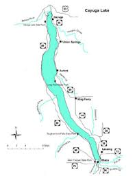 Long Lake Ny Depth Chart Cayuga Lake Nys Dept Of Environmental Conservation