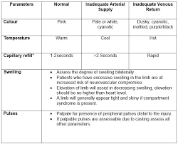 Musculoskeletal Assessment Example