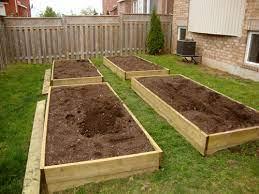 my vegetable garden hautepnk