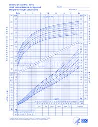 Head Circumference Chart Preview Pdf Boys Birth To 24 Months Weight Length