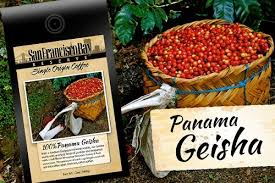 According to the story, the peterson family of you can buy geisha in the tchibo cafe around the corner, big chains have the expensive coffee grown themselves, this special. A Look At The Best Geisha Coffee Out There Worldcoffeestore Com