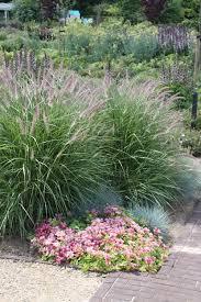 Plantenencyclopedie Front Garden Ideas