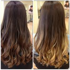 Hair Color Category Balayage Black Hair Highlights For Dark Brown