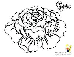 amy rose coloring pages rose coloring page rose coloring pages printable amy rose coloring sheets