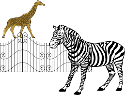 zoo animals in cages clipart. Fine Zoo Svg Black And White Download Animals Clip Art At Clker Com Vector On Zoo In Cages Clipart O