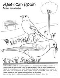 Small Picture Nature Coloring Pages for Kids