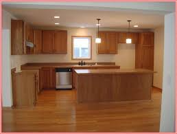 Options For Kitchen Flooring Kitchen Floor Options Houses Flooring Picture Ideas Blogule