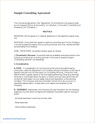 Consulting Report Consultant Report Template New Consultant Report Template Future 3
