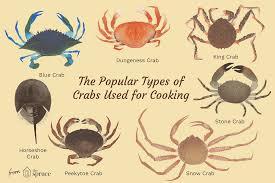 Crab Species Chart Edible Crab Varieties And Types