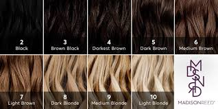 The haircoloring manual, how haircolor really works, corrective color hair from light to dark it may seem that going from dark hair to light is the biggest and most challenging process and that the reverse is easy as pie. Dear Color Crew What Level Is My Hair