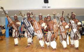 Image result for Lions of Zululand