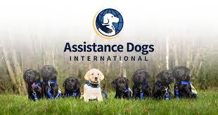 Assistance <b>Dogs</b> International