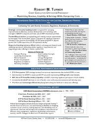 Ceo Resume Template Unique AwardWinning CEO Sample Resume CEO Resume Writer Executive