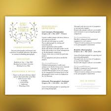 Unique Resume Horizontal Layout - Instant Download - Word Document -  Yellow/Gray Modern FRANKLIN